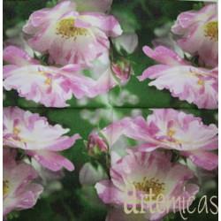 Guardanapo Flores GF-11