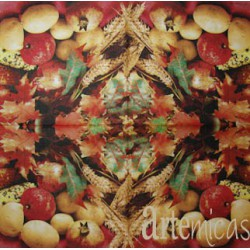 Guardanapos Cozinha GC33